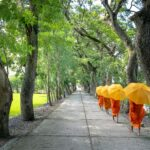 Cos'è veramente un percorso spirituale?